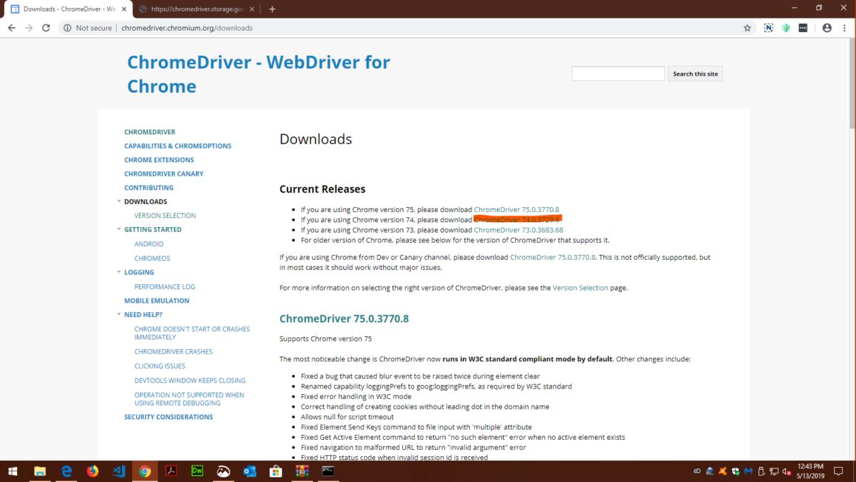 Selenium Webdriver Chrome Extension